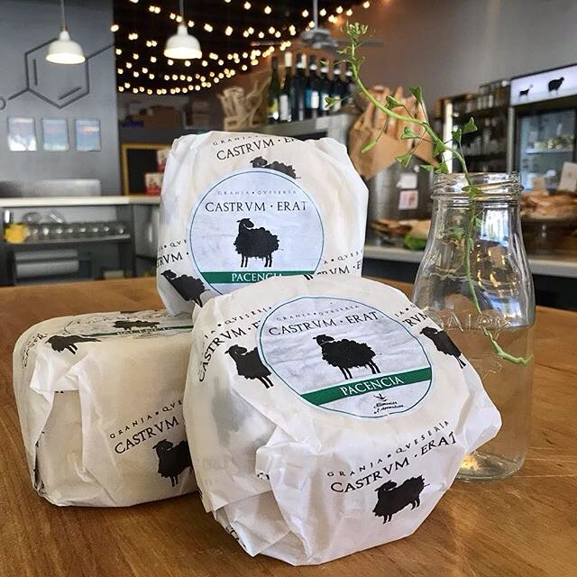 Meet Pacencia, our newest raw farmstead sheep's milk cheese from Spain! Try it if you like Manchego! 1/17/18 #milkfarmlunch •BLACT/FLACT: Zoe's applewood bacon OR our house ham & cheese fritata, butterleaf, avocado, hook's 2 yr cheddar, sundried tomatoes, aioli, and walnut basil pesto on ciabatta •SPECK: double cream Brie, and fig jam on ficelle •MUSHROOM MELT: roasted mushrooms, black garlic aioli, arugula, fresh herbs, fontina, holey cow cheese, and smoked mozzarella on multigrain •GRILLED CHEESE •MAC N CHEESE